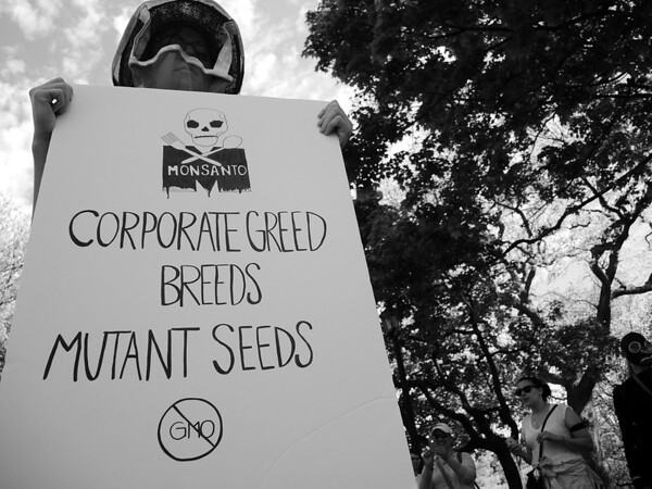 Toronto March Against Monsanto with Requiem for Bees